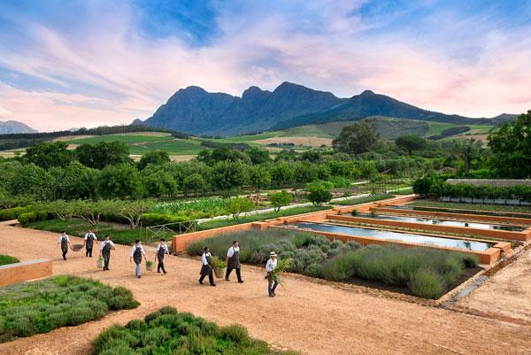 afrique du sud voyage vignobles babylonstoren hotel bio design gastronomie