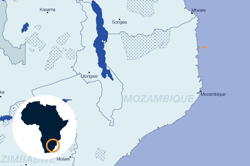 safari mozambique océan indien vacances balnéaires voyage