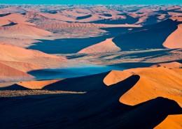 désert et animaux en afrique
