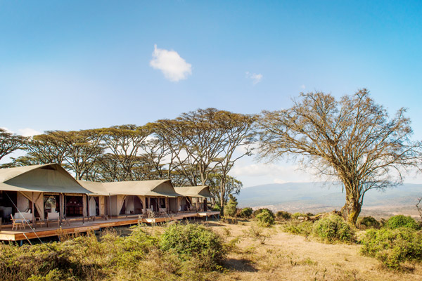 Entamanu cratere ngorongoro tanzanie safari