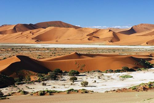 Sossulvei Mungo Park Namibie