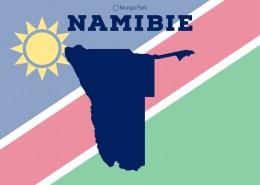 infographie sur la Namibie