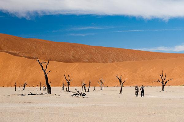 explorer le désert du namib en Namibie paysages