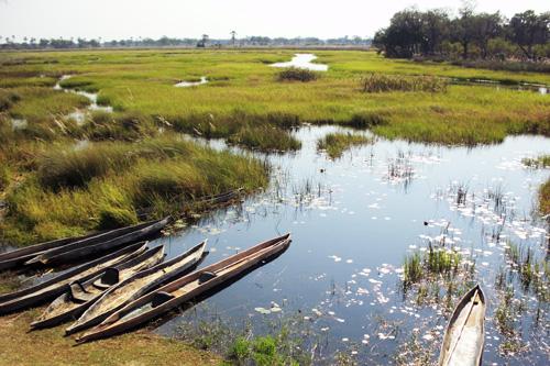 Delta de l'Okavango Botswana Mungo Park