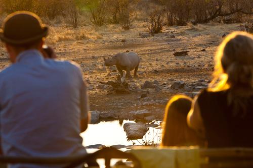 Des rhinos en safari avec Mungo Park en Namibie