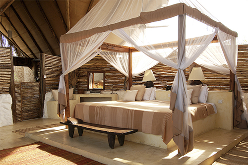 Mungo Park Tanzanie Afrique voyage