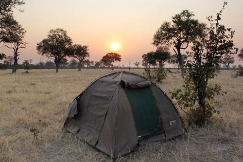 agence de voyage genève botswana kalahari