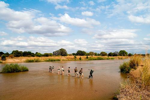 Bushwalk Mungo Park safari en afrique