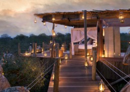 safari exceptionnel tree house