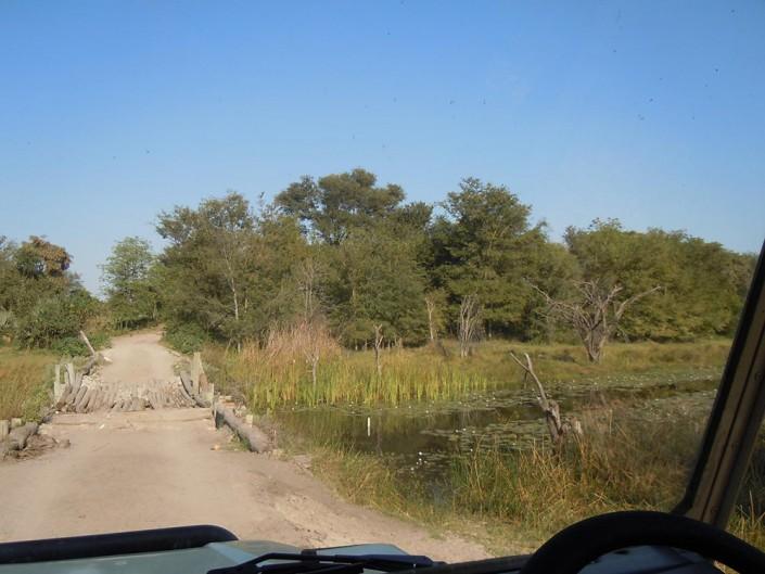 Et les ponts se traversent en voiture de safari