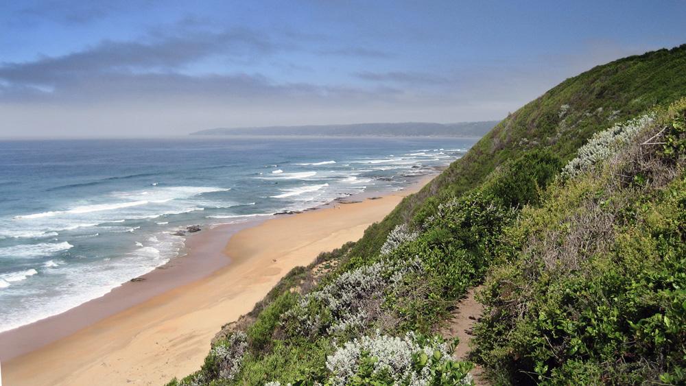 randonnée dans le parc national de Wilderness sur la route des jardins en Afrique du Sud