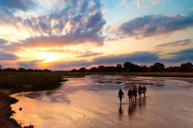 Un safari en randonnée avec Mungo Park