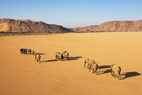 Damaraland Namibie voyage