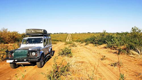 safari aventure decouverte dangereux avec les lions camping dans la savane au milieu de nul part