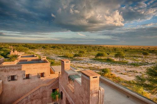 onguma fort safari namibie exeptionnel lion zebre rhino