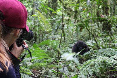 ouganda safari trekking gorilles bwindi agence spécialisée