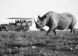 route des jardins afrique du sud road trip autotour sur mesure
