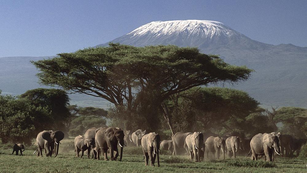 le toit de l'afrique