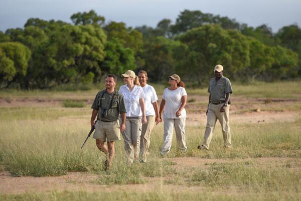 visite Kruger Afrique du Sud activités
