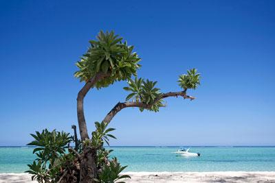 vacances balneaires sur l'île maurice sur mesure