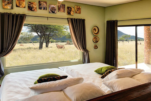 Safari Namibie Okonjima camp africat foundation