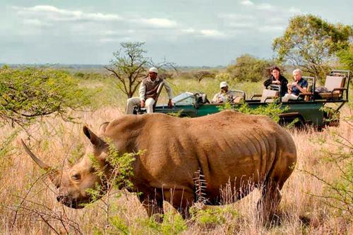safari avec Mungo Park, agence spécialisée dans l'afrique