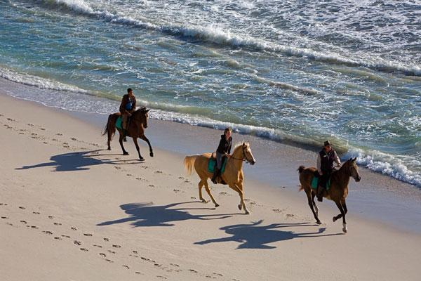 visite Afrique du Sud route des jardins activité randonnées cheval