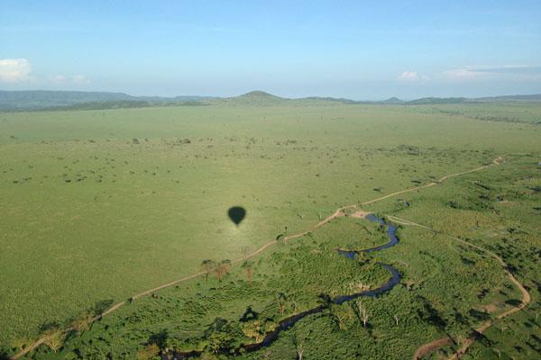 A quelle saison partir en safari animaux pluies tanzanie