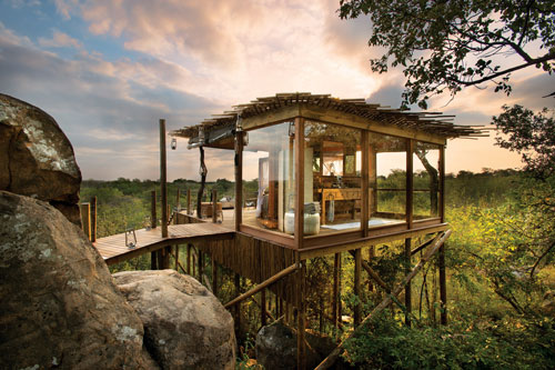 voyage de noce lune de miel honey moon safari sabi sands ivory lodge maison dans les arbres tree house insolite